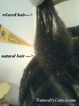 Natural Hair Transition